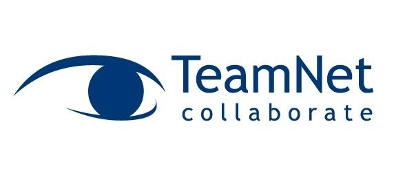 Program de internship organizat de TeamNet