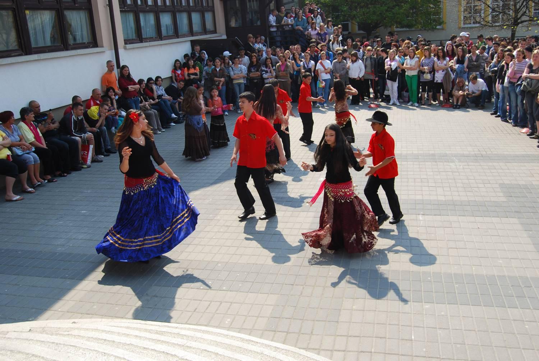 Copiii ar putea învăța de la anul istoria romilor și a ungurilor