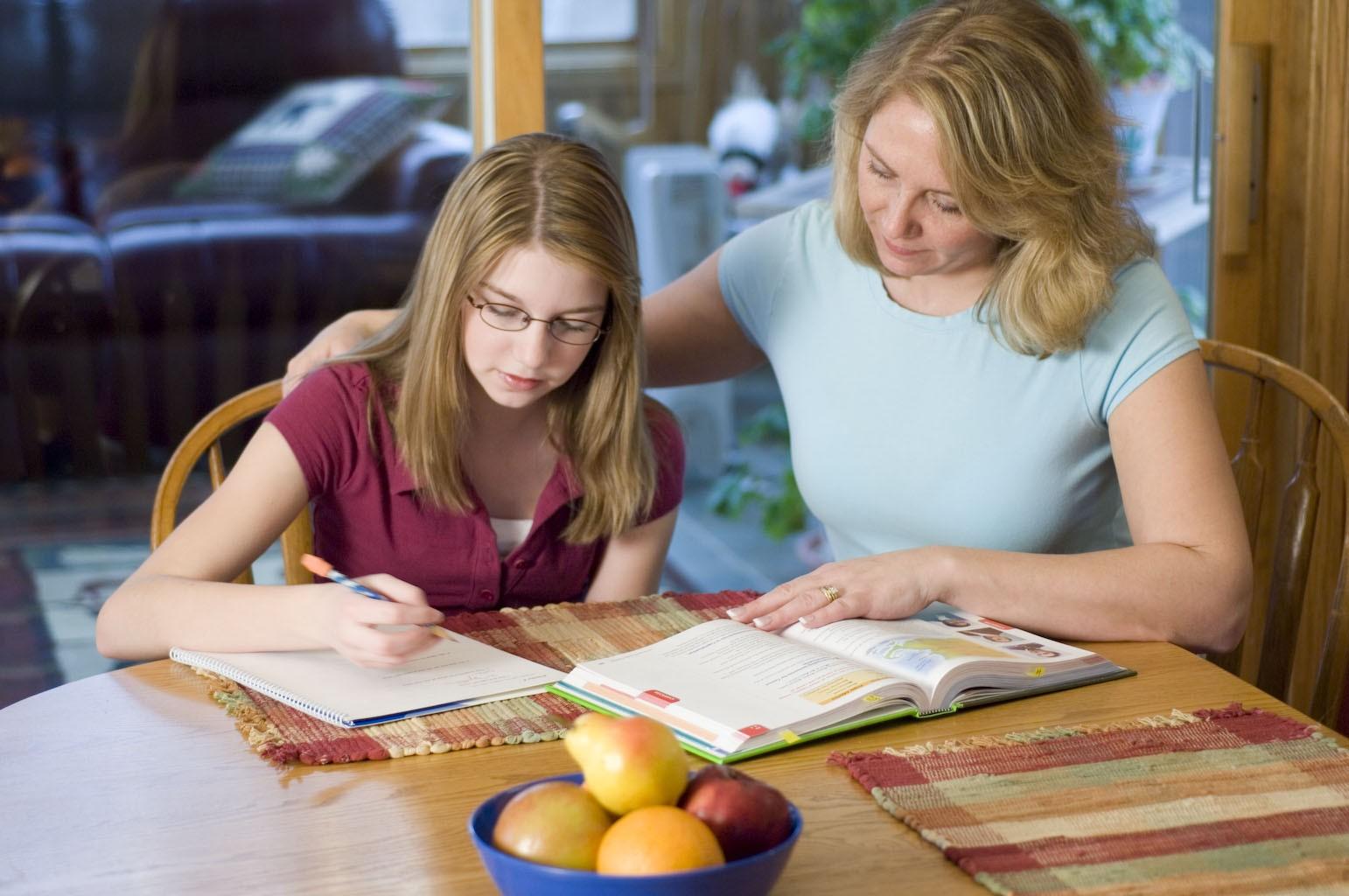 Copiii români din Diaspora ar putea fi școlarizați la domiciliu