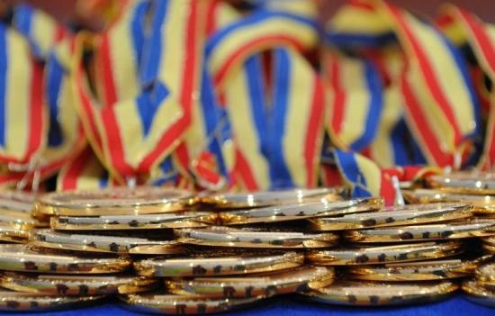 Elevii români au obținut nouă medalii la competițiile regionale de informatică