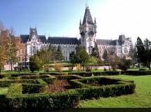 Două mari universități ieșene s-au impus la Olimpiada de Matematică online