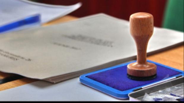 Liga Studenților Români din Străinătate cere adoptarea votului electronic sau prin corespondență