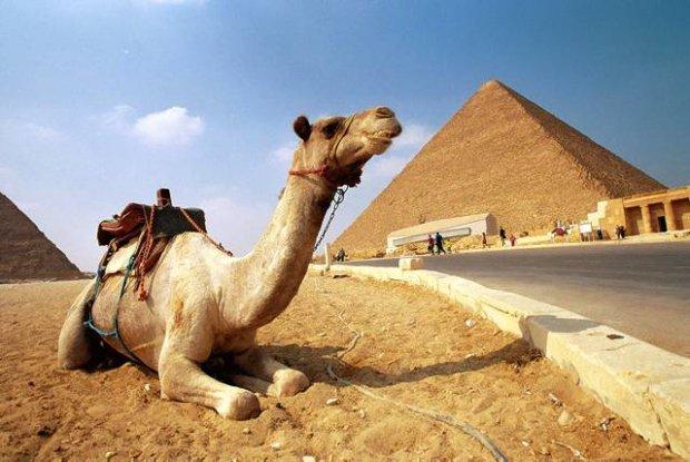 muzeu-egipt