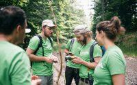 Tabără pentru protejarea pădurilor virgine din România