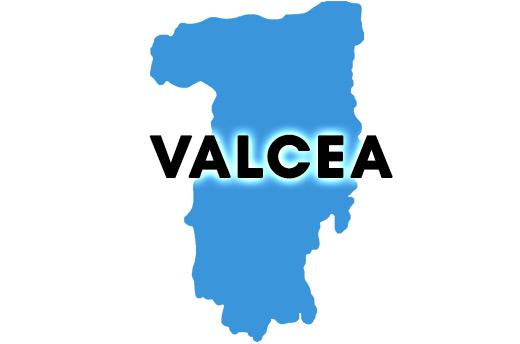 REZULTATE BAC 2018 Valcea. Ce note au obtinut elevii din Valcea la Bacalaureat