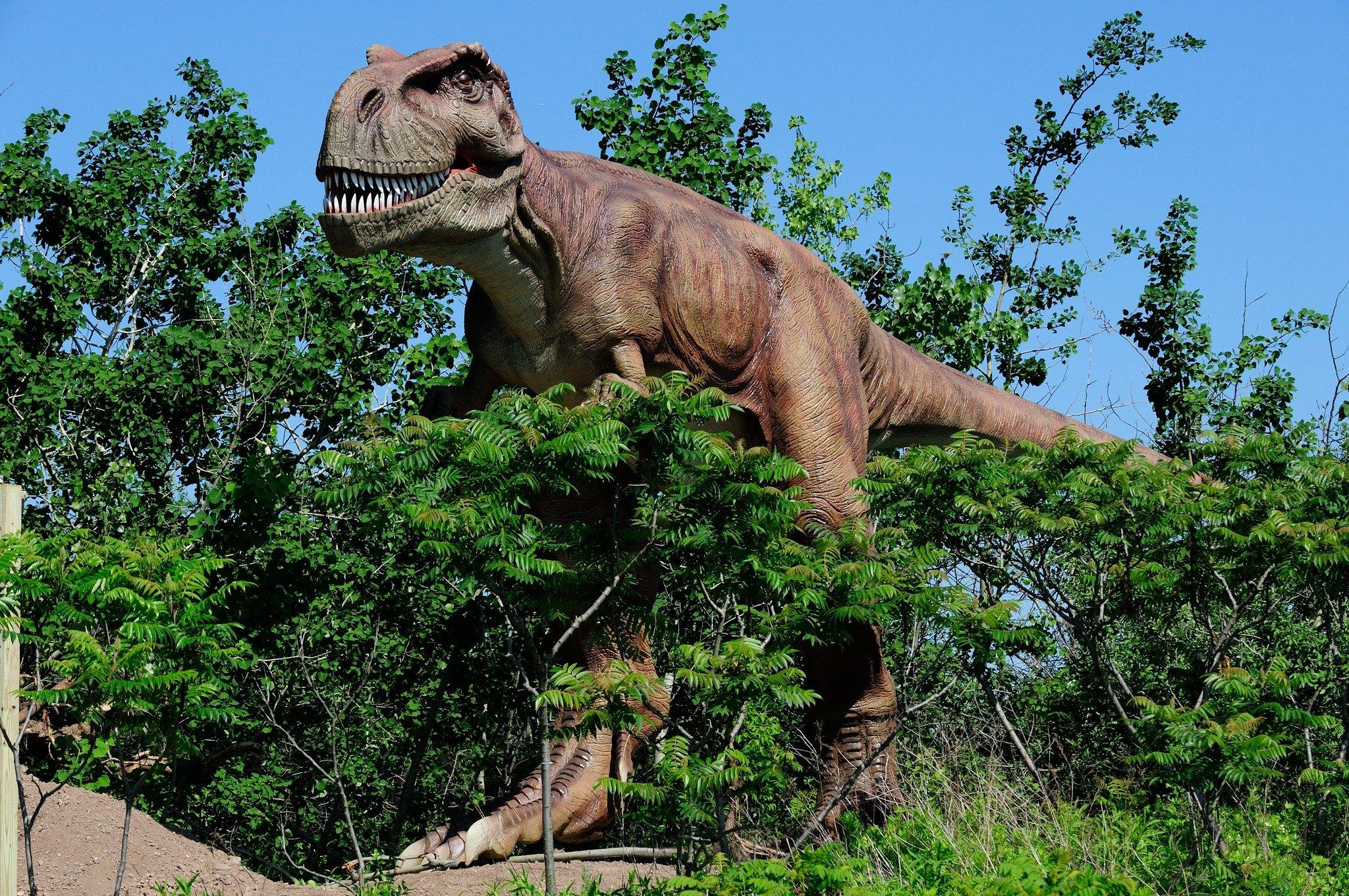 Discovery invită profesorii și elevii din școlile din România să creeze un dinozaur