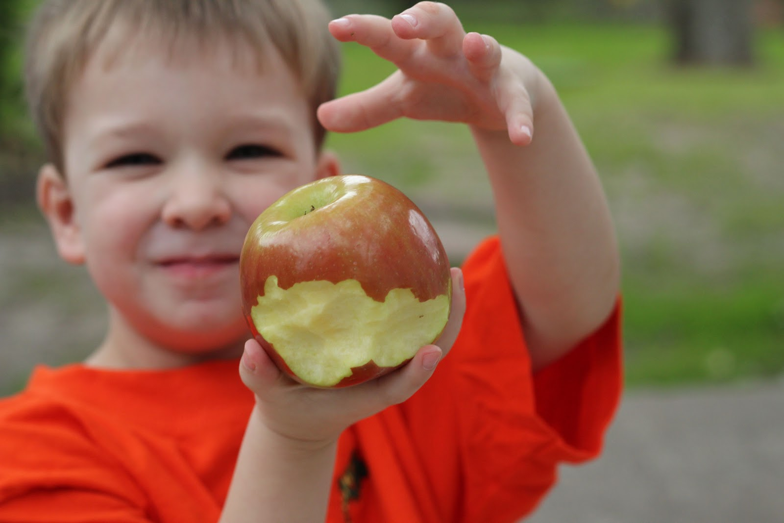 Mai puțini bani pentru distribuirea fructelor în școli