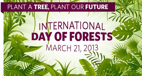 Ziua Internațională a Pădurilor, sărbătorită astăzi și în România