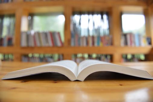 Manualele școlare vor fi schimbate o dată la patru ani