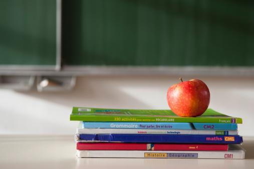Ministerul Educației a lansat licitația pentru realizarea de manuale noi