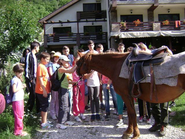 Tabăra Coolturală BookLand – Educație nonformală într-o tabără inedită de vară