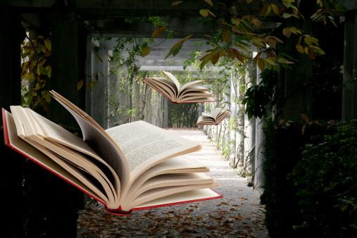 Astăzi este Ziua Internațională a Cărții