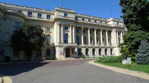 Muzeul Național de Artă al României caută tineri voluntari pentru activitățile sale