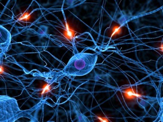 26 martie, Ziua Internațională a Luptei împortiva Epilepsiei