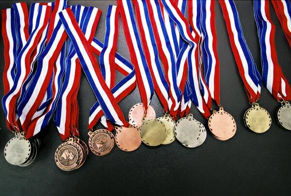Elevii români au cucerit 11 medalii la Olimpiada Internațională Pluridisciplinară