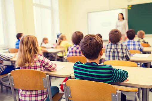 Bugetul Ministerului Educației a fost redus!