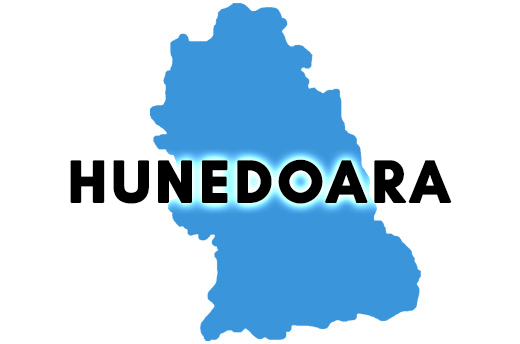 REZULTATE BAC 2018 Hunedoara. Ce note au obtinut elevii din Hunedoara la Bacalaureat