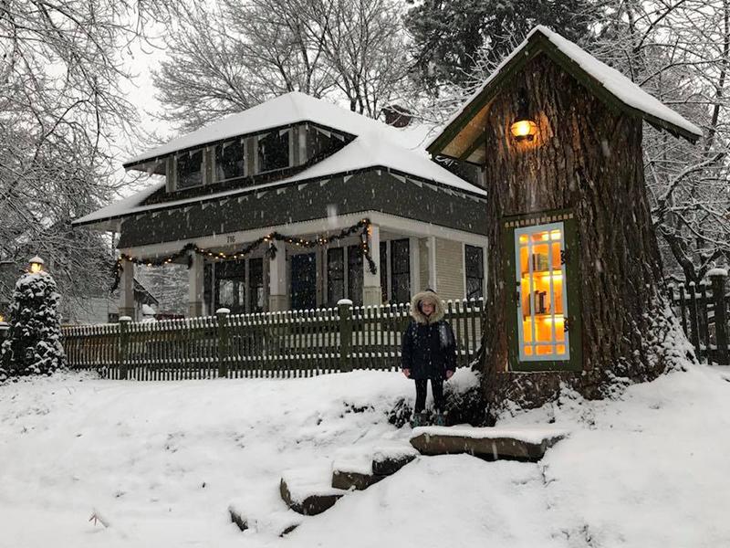 Un librar american a transformat un arbore intr-o mica biblioteca