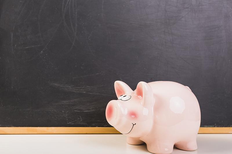 Guvernul lasa primariile sa stabileasca sumele pentru bursele elevilor