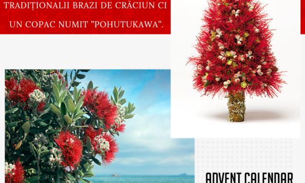 Edu-news.ro Advent Calendar – It's something elves! (23 Decembrie)