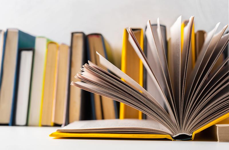 Editorii de manuale au fost chemati la Ministerul Educatiei