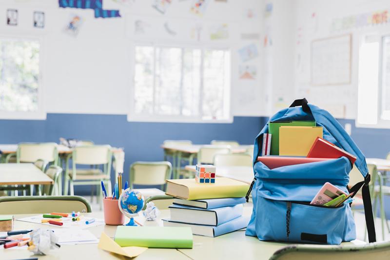 Consiliul Elevilor cere Ministerului Educatiei sa suspende cursurile de teama coronavirusului