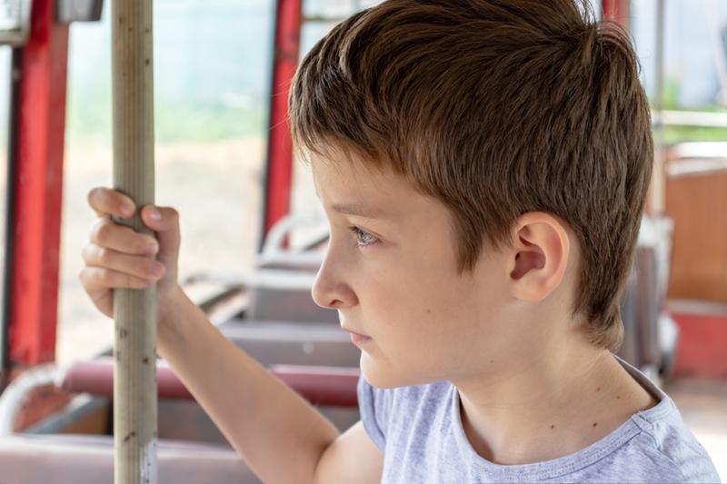 Elevii vor beneficia de transport public gratuit